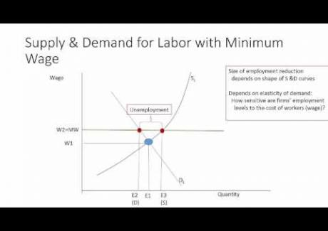 Week 7: Module 7.2 Poverty and the Minimum Wage