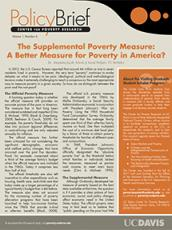 Image of Download The Supplemental Poverty Measure