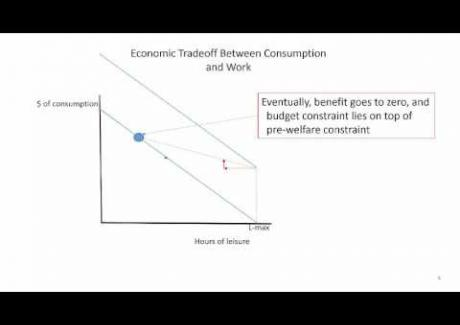 Week 8: Module 8.2 Economic Theory of Welfare and Work Incentives