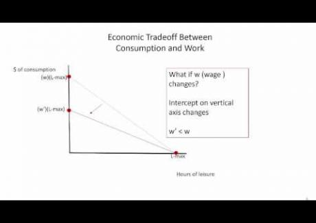 Week 8: Module 8.1 (Review of) Economic Model of Conumption-Leisure Choice